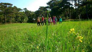 WOW Waldwoche: Orientierungslauf
