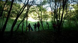 Waldbande