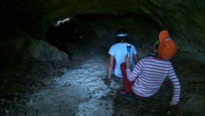 WOW Waldwoche: Höhlenforscher