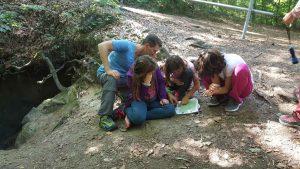 WOW Waldwoche: Navigation in der Praxis